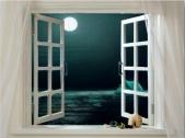 foto finestra con sfondo notte e luna piena