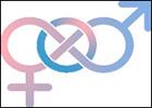 Locandina Discriminazione e omofobia nei luoghi di lavoro. Il caso della Pubblica Amministrazione