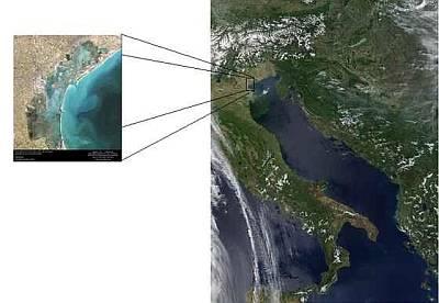Particolare della Laguna Veneta