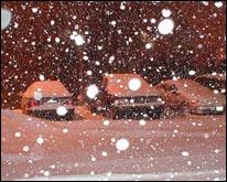 Auto sepolte da una nevicata