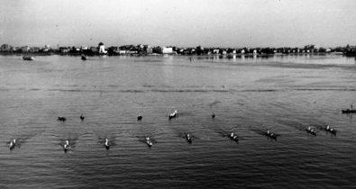 1952 Una spettacolare immagine aerea della partenza della Regata