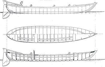 topo veneziano del 1882