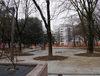23.12.2013 - Interventi sul verde pubblico piazzale Madonna Pellegrina e area attigua